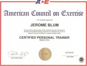 ace certification - copie